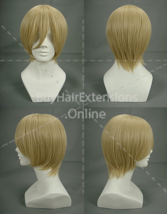 anime cosplay wigs for house and lot for sale in